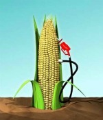 Post image for Ethanol Industry Hurting from Loss of Tax Credit