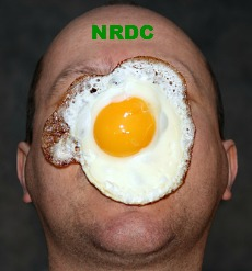 "Post image for NRDC Left with Egg on Face as ""Laughable"" Lawsuit Proceeds against Proposed Clean Power Plan"
