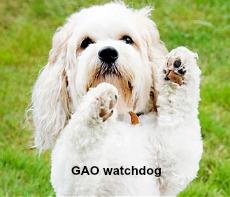 GAO watchdog