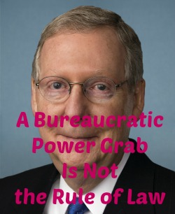 Post image for EPA's Clean Power Plan: Whitman Goes Orwell on McConnell