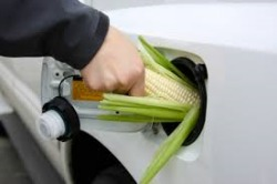 Post image for EPA's Renewable Fuel Standard Proposal Ignores Root Cause of Blend Wall